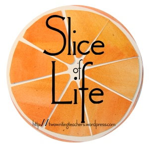 Join the Slice of Life movement at Two Writing Teachers.